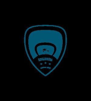 Logocv bleu