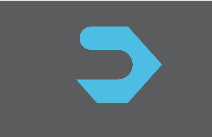 Cv logo grisbleupolice 2